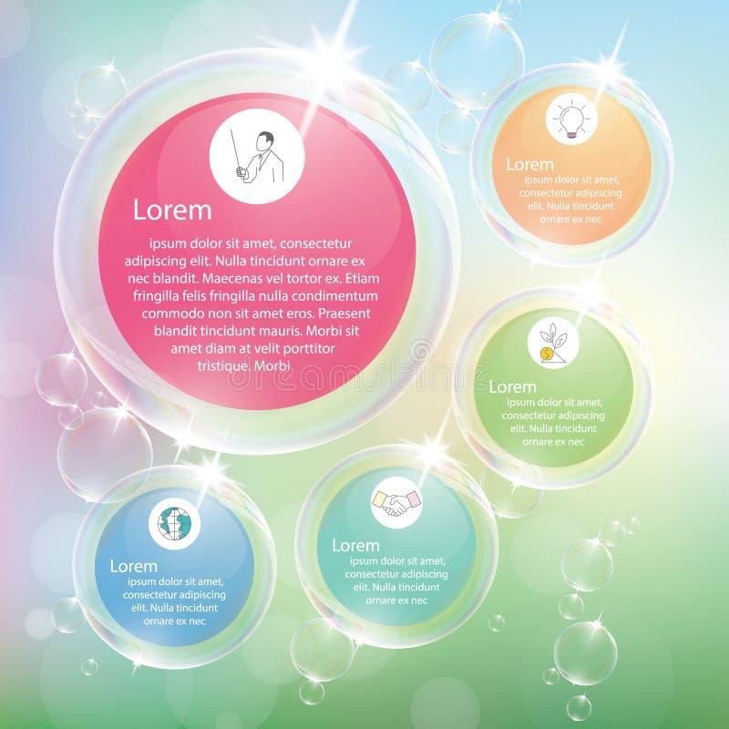 Transparent bubbles infographic with pastel color. vector illustration
