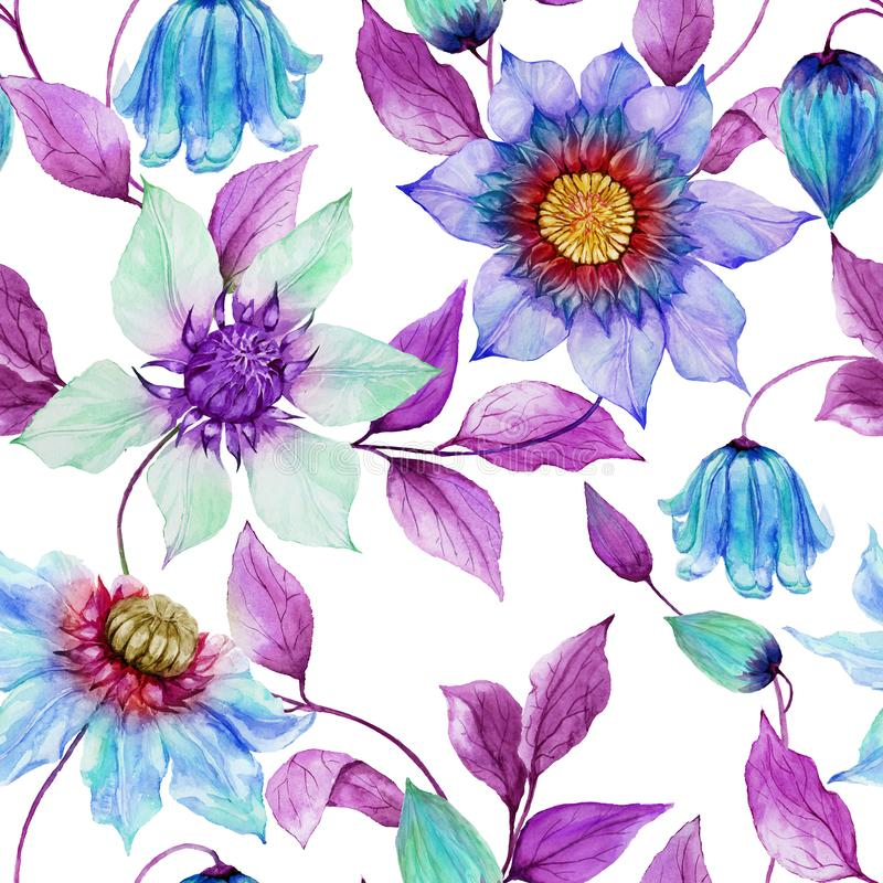 Transparent clematis flowers on climbing twigs against white background. Seamless floral pattern. Watercolor painting. Hand painted illustration. Fabric royalty free illustration