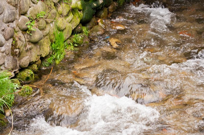 Transparent cold water of a mountain river flows between picturesque summer stones against a background of green trees. Close up royalty free stock image