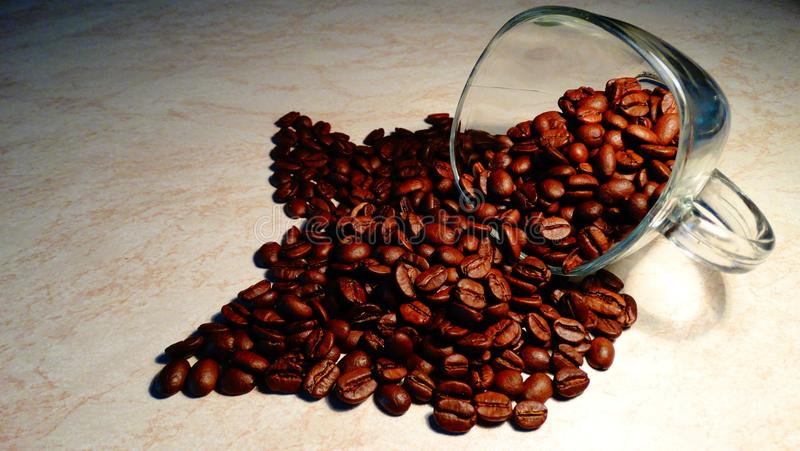Transparent cup and coffe beans, Coffe Espresso royalty free stock images