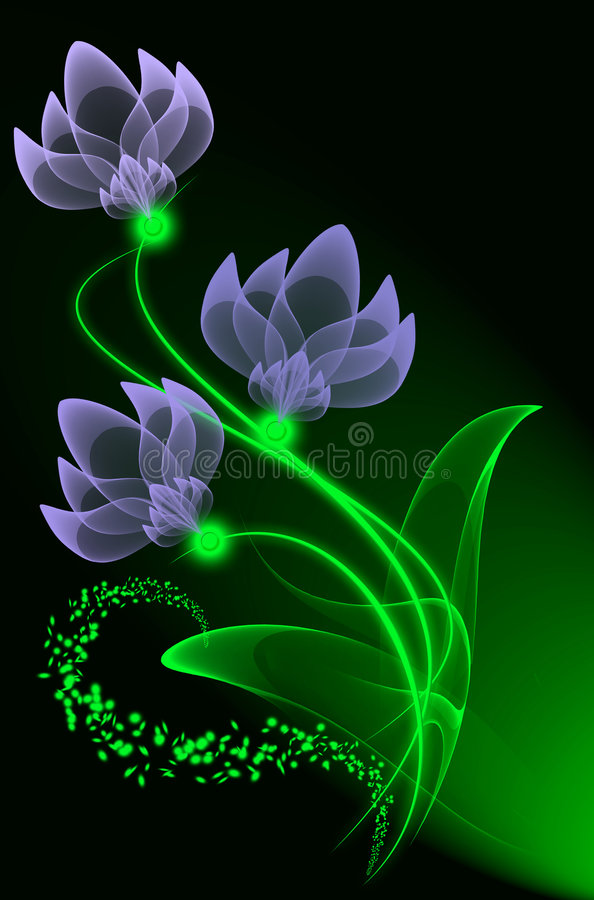 Download Transparent flowers stock illustration. Image of birthday - 7701034