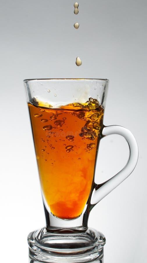 Download Transparent glass cup stock image. Image of transparent - 28269295