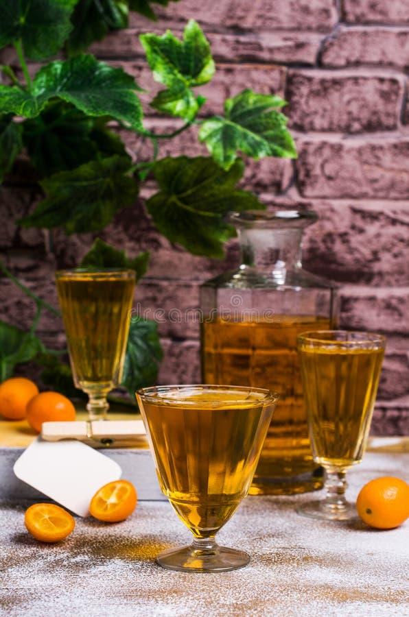 Free Transparent Orange Drink Stock Image - 102808731