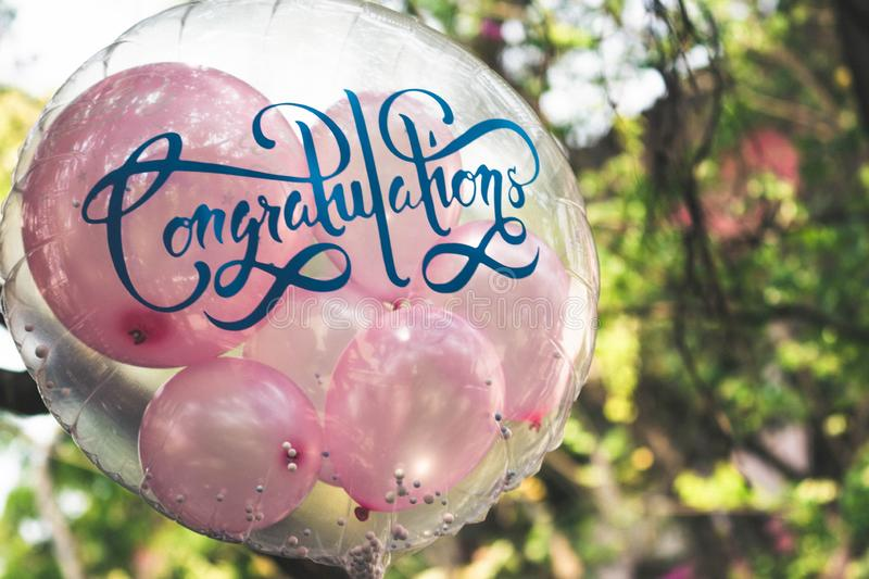 Transparent round balloon inserted with small pink balloons for greeting cerebration.  royalty free stock image