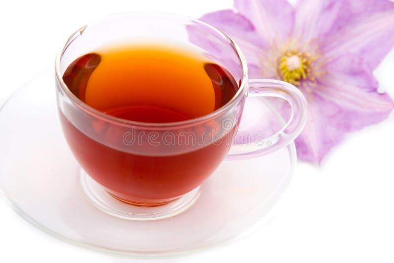 Transparent teacup with tea stock images