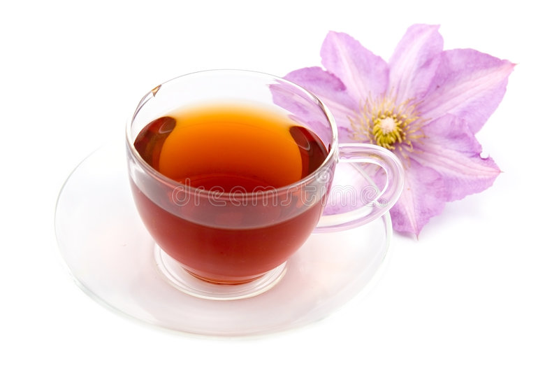 Transparent teacup with tea royalty free stock photography