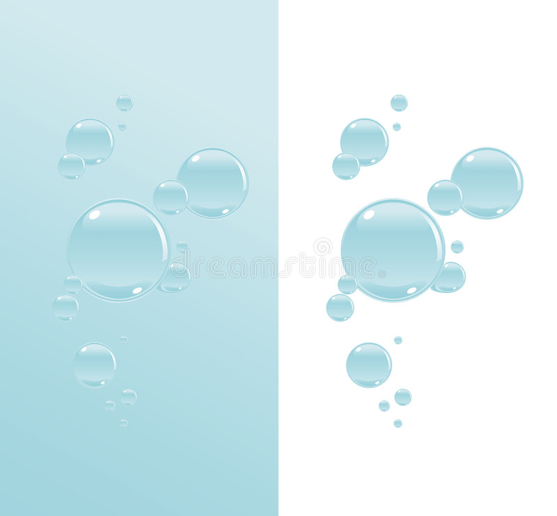 Download Transparent water bubbles stock vector. Illustration of circle - 8625772