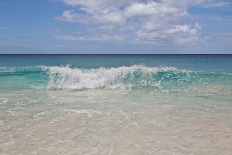 Transparent wave stock images