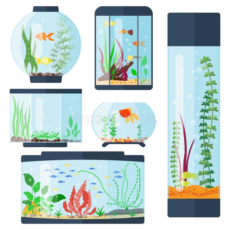 Transparente Aquariumvektorillustration lokalisiert auf Weißfischlebensraumaquarierhausunterwasserbehälterschüssel stock abbildung