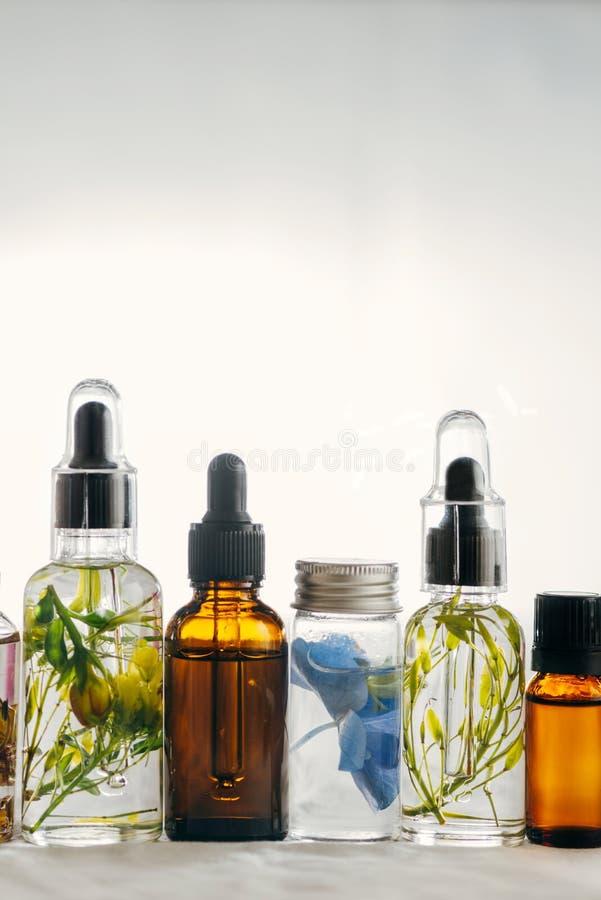 Transparente Flaschen ätherisches Öl mit frischen Kräutern stockfotos