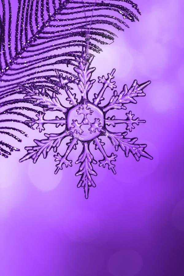Transparente Schneeflocke Chrystal auf silberner Niederlassung lizenzfreies stockbild