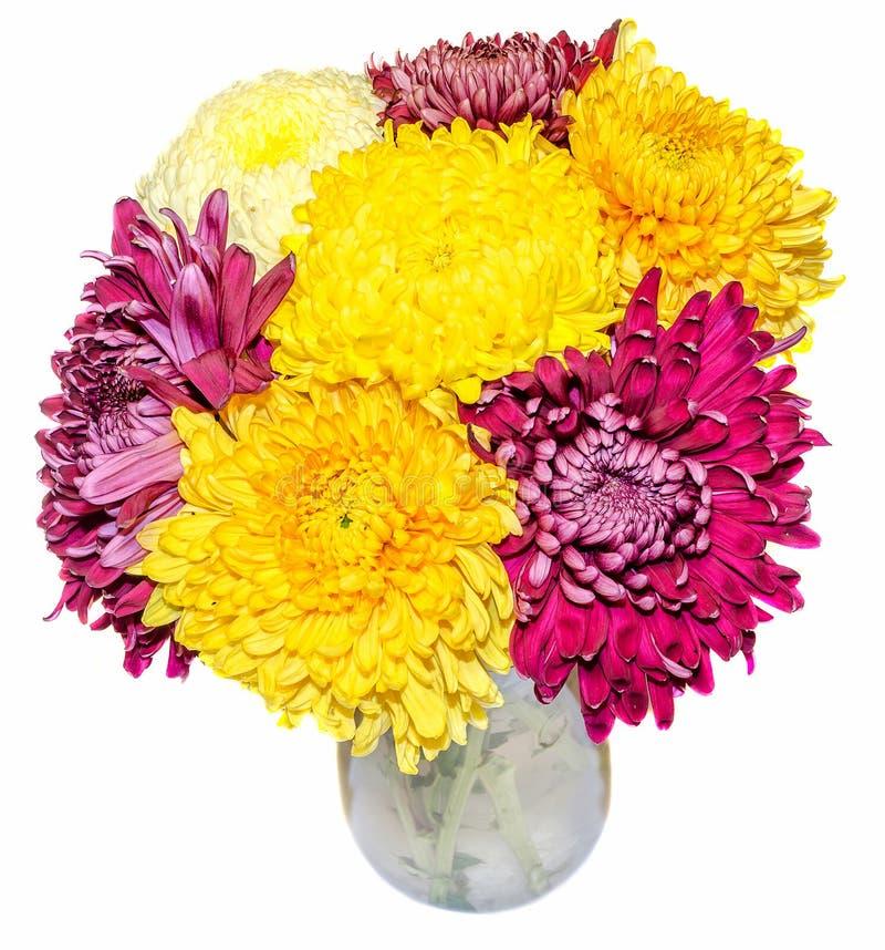 Transparenter Vase mit den purpurroten und gelben Blumen der Chrysantheme und des dhalia, lokalisierter, weißer Hintergrund lizenzfreie abbildung