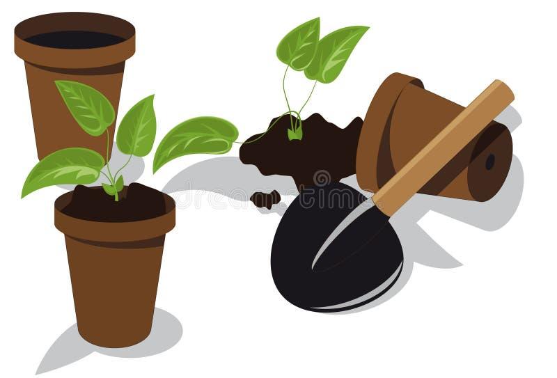 Download Transplanting Flower Seedlings Stock Vector - Image: 14191216