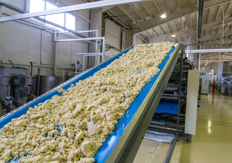Transportador automatizado de la planta de tratamiento de la producción de las galletas de la galleta Transferencias de la banda  imágenes de archivo libres de regalías