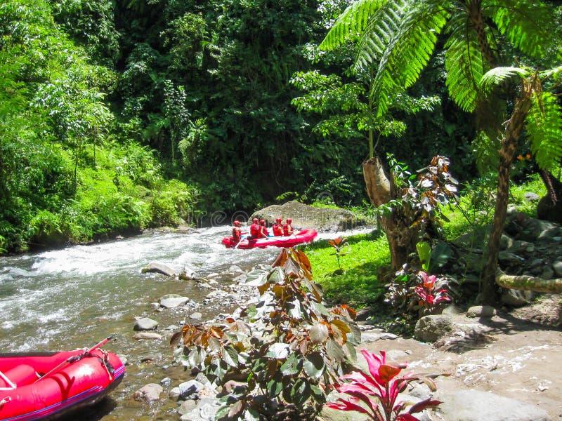 Transportando en balsa en el barranco en el río de la montaña de Balis, Indonesia imagen de archivo