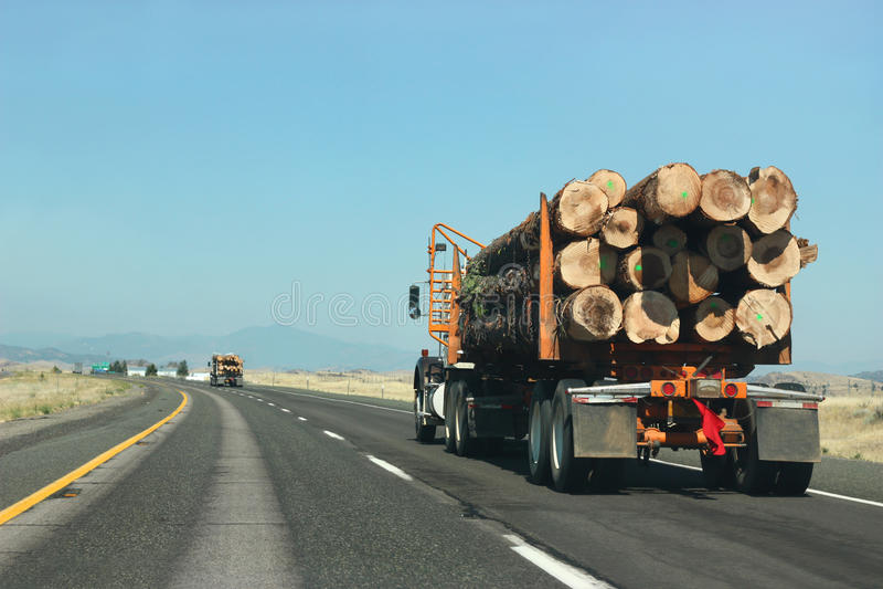 Transportando a madeira imagens de stock