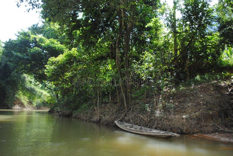 Transportar através da selva - barco velho foto de stock royalty free