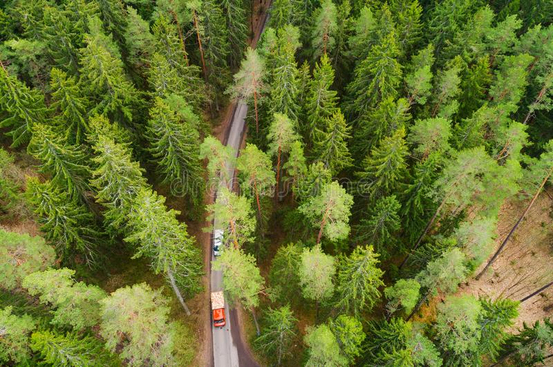 Transportation background. Trucks moving through forest on narrow road. royalty free stock photos