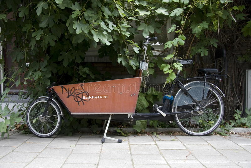 Transportcykel i Amsterdam royaltyfria foton