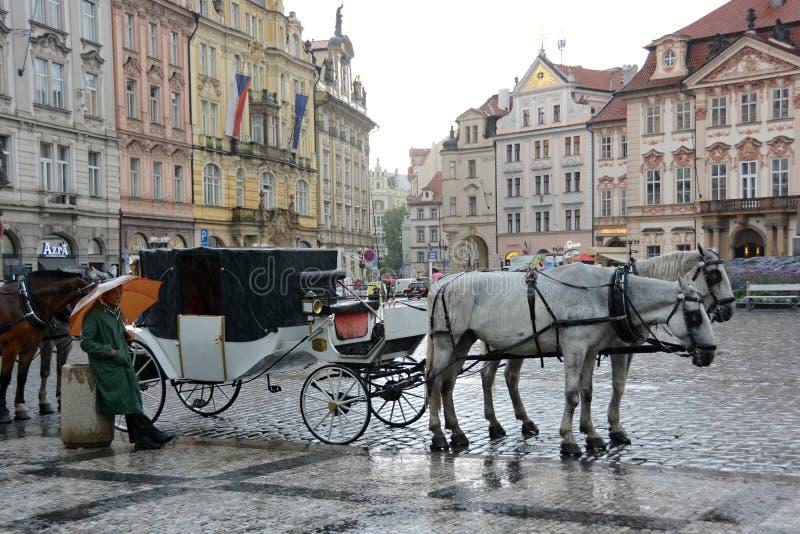 Transporte com os cavalos na praça da cidade velha em Praga imagem de stock