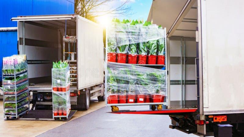 Transporte comercial Envase de transporte del camión Transporte de la carga Europa fotografía de archivo