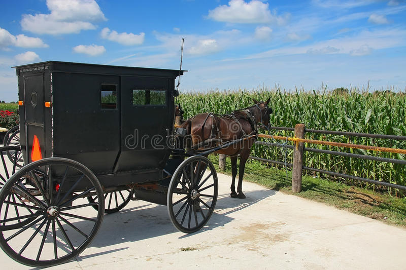 Transporte de Amish foto de stock royalty free