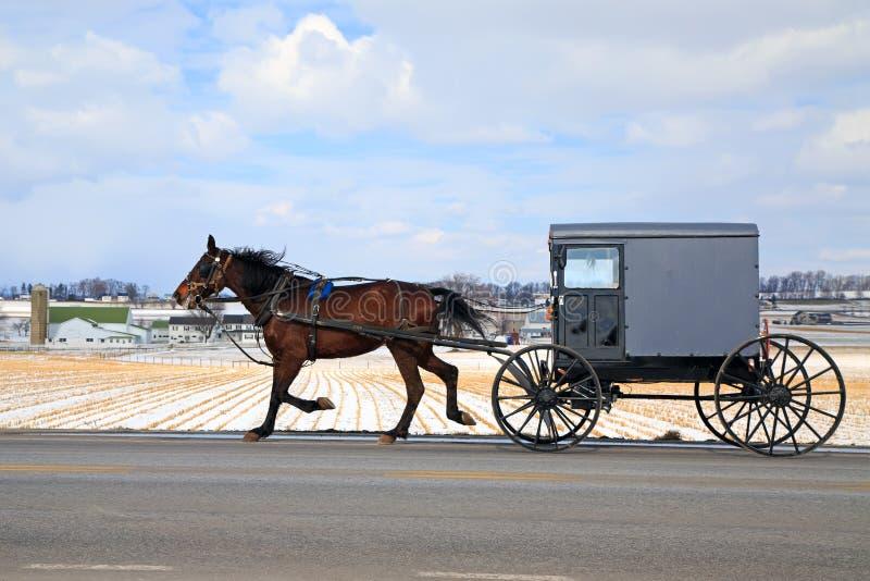 Transporte de Amish no inverno foto de stock royalty free