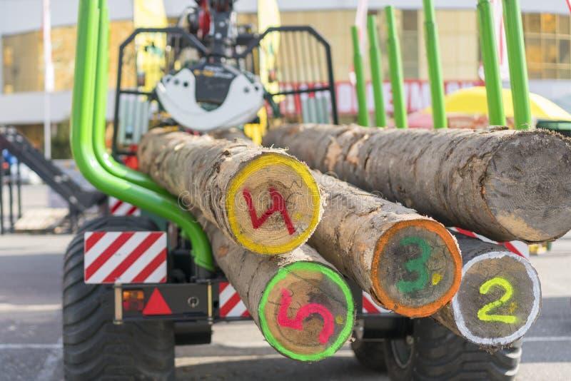 Transporte do caminhão da ponta da madeira vista O caminhão transporta logs, na estrada Os logs do corte são carregados em um cam imagem de stock