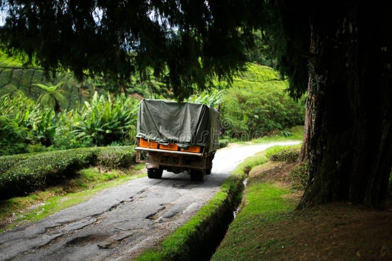 Transporte do caminhão do recolhimento imagem de stock royalty free