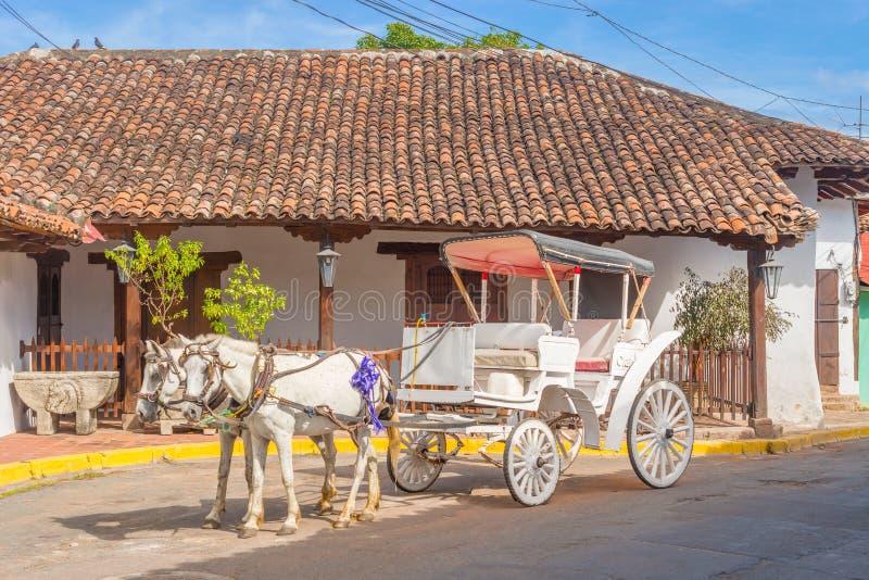 Transporte do cavalo na rua em Granada, Nicarágua imagem de stock royalty free