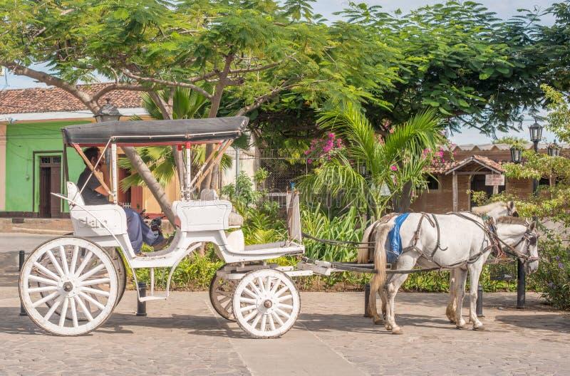 Transporte do cavalo na rua em Granada, Nicarágua foto de stock