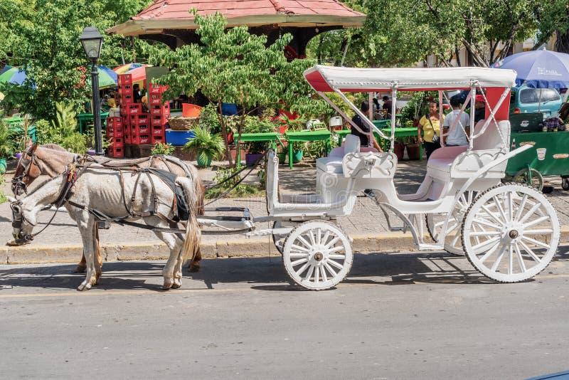 Transporte do cavalo no Central Park em Granada, Nicarágua fotografia de stock royalty free