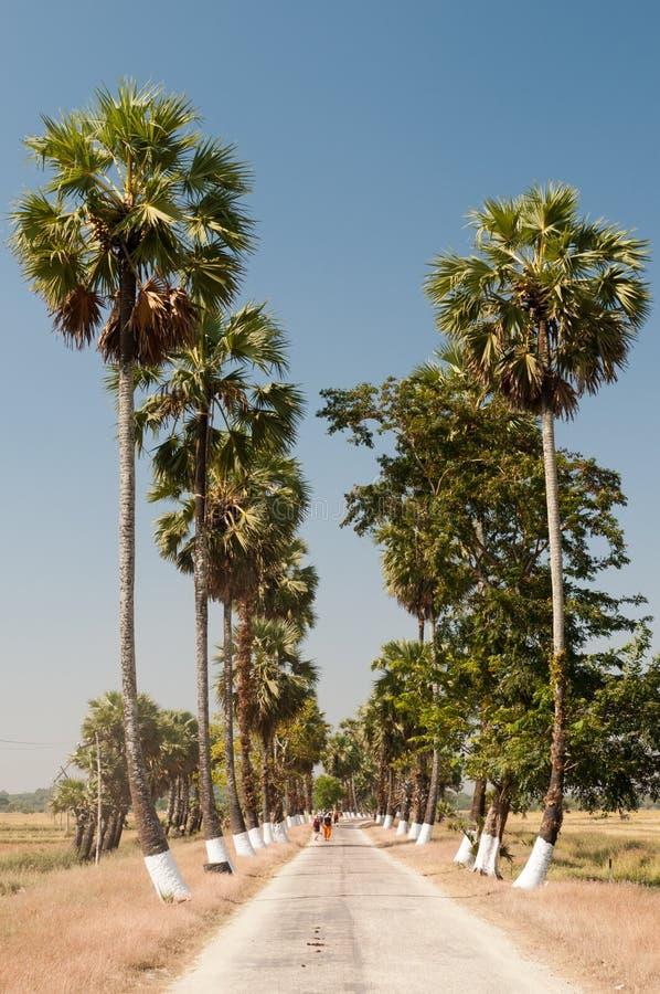 Transporte local en la isla de Bilu, Myanmar fotos de archivo libres de regalías