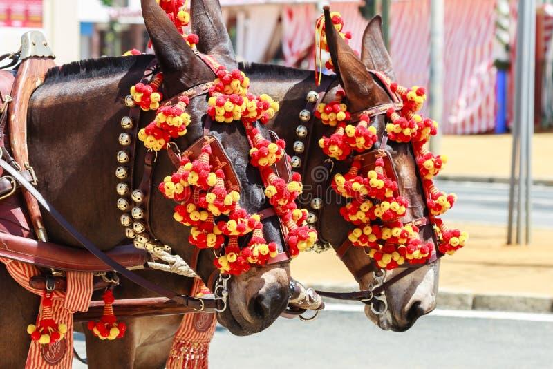 Transporte puxado a cavalo na feira de Sevilha imagens de stock
