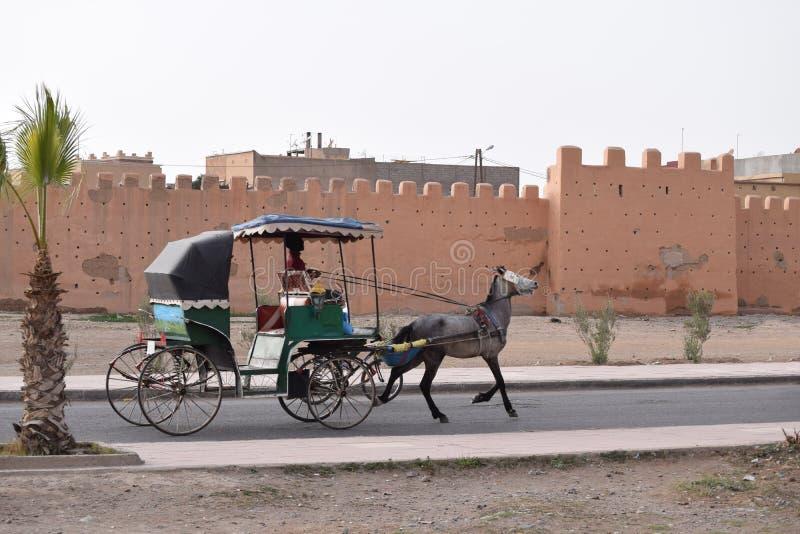 Transporte puxado a cavalo na frente da parede da cidade de Taroudant, Marrocos fotografia de stock royalty free