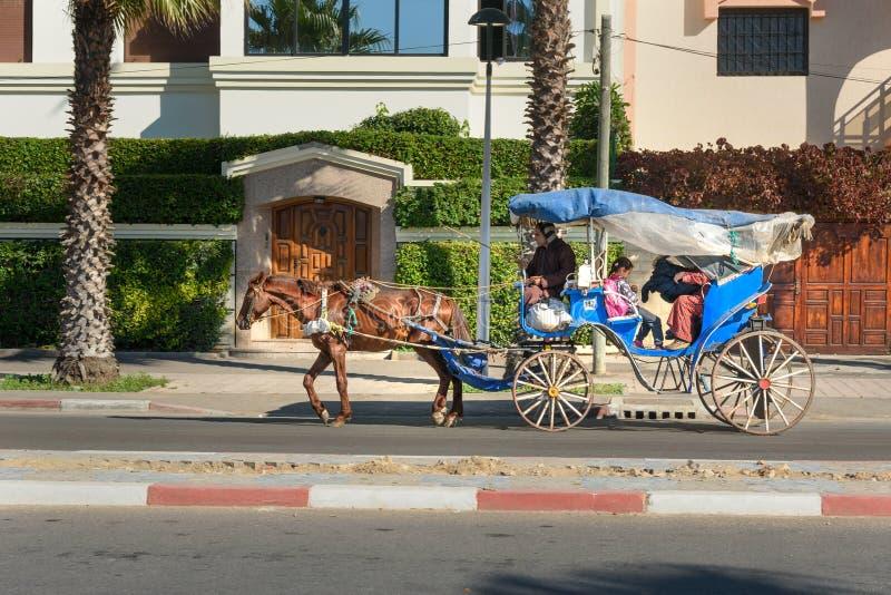 Transporte puxado por cavalos marroquino em Essaouira marrocos imagem de stock
