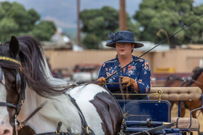Transporte que conduz a competição foto de stock royalty free