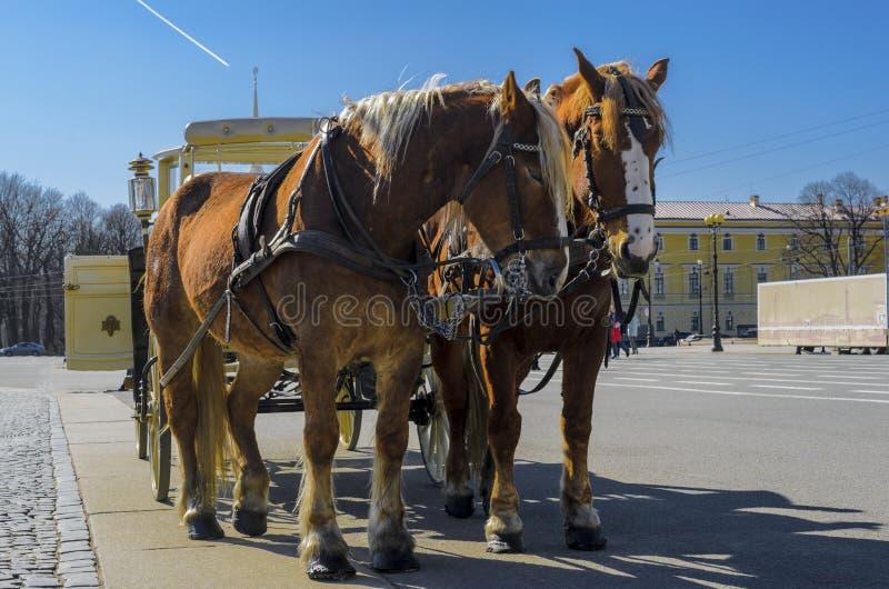 Transporte retro velho na frente do museu de eremitério do palácio do inverno no quadrado do palácio em St Petersburg, Rússia Vel imagens de stock