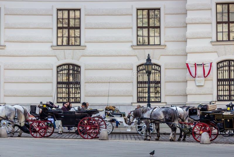 Transportes do cavalo no quadrado de St Michael em Viena fotografia de stock royalty free