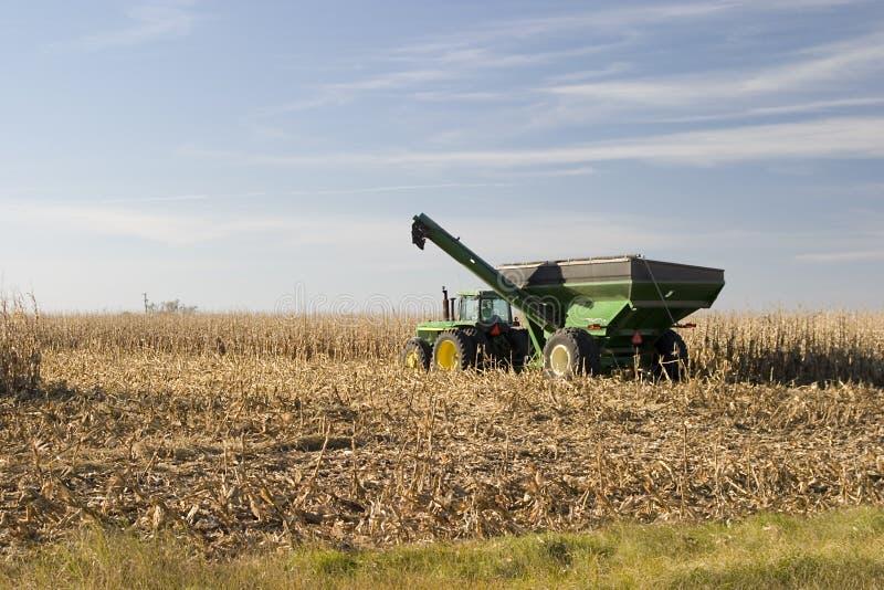 Transporteur de maïs images stock