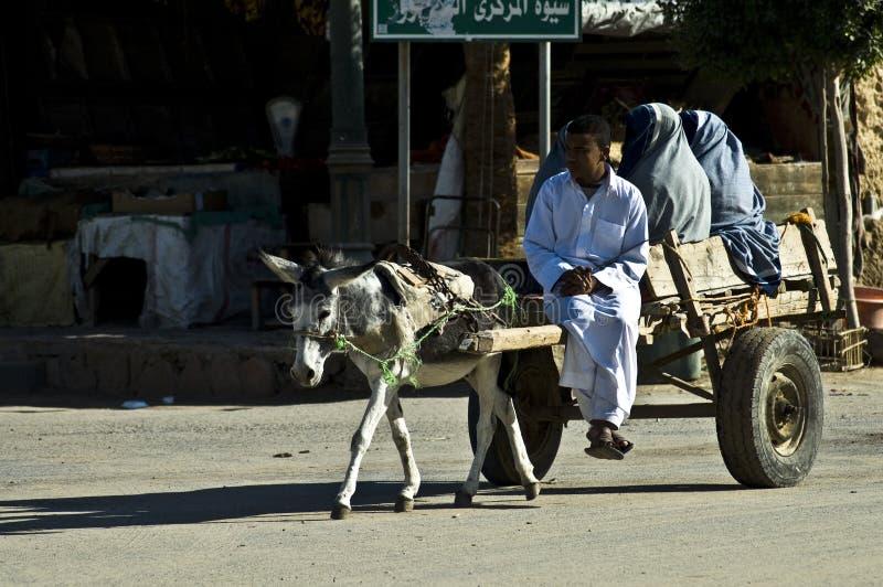 Transportmittel in Siwa stockfoto
