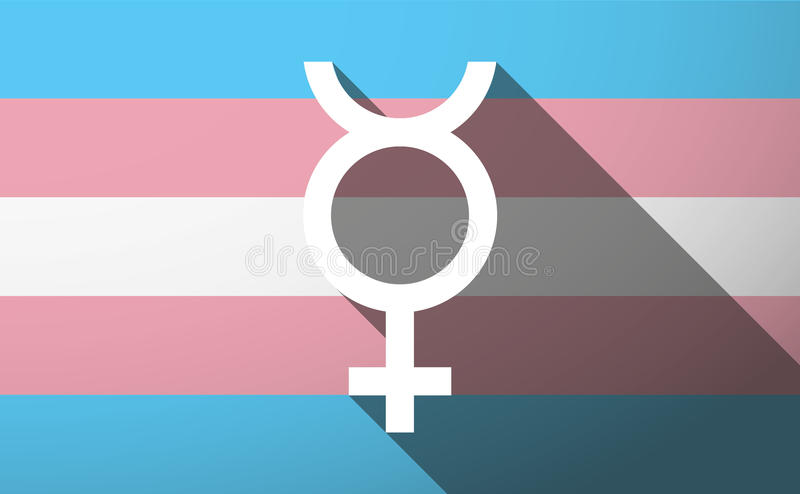 Transsexueelvlag royalty-vrije stock afbeelding