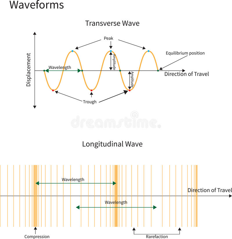 Transversale en Longitudinale Golven royalty-vrije illustratie