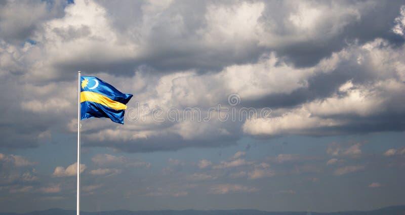 Transylvanian-Flagge stockfotografie