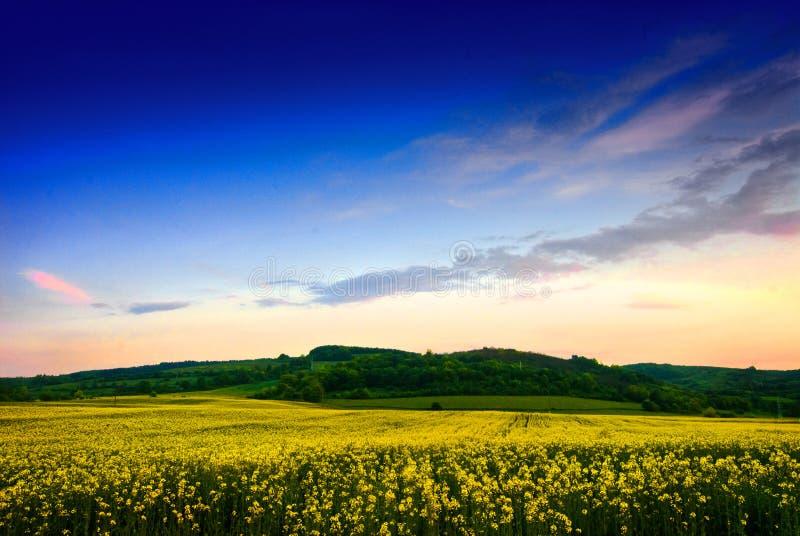 Transylvanian Landscape stock photo