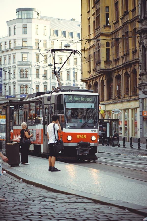 Tranvías en la calle en Praga, transporte público fotos de archivo