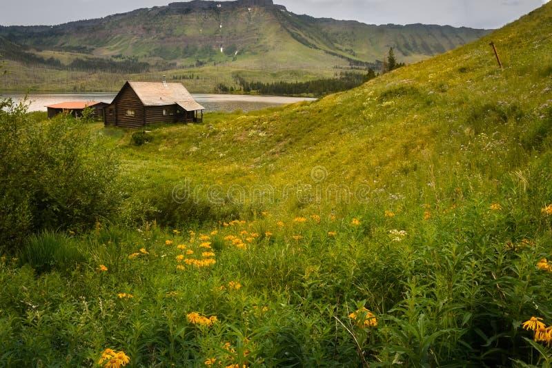 Traper Jeziorna Stara Halna kabina Z Pomarańczowymi Wildflowers zdjęcia royalty free