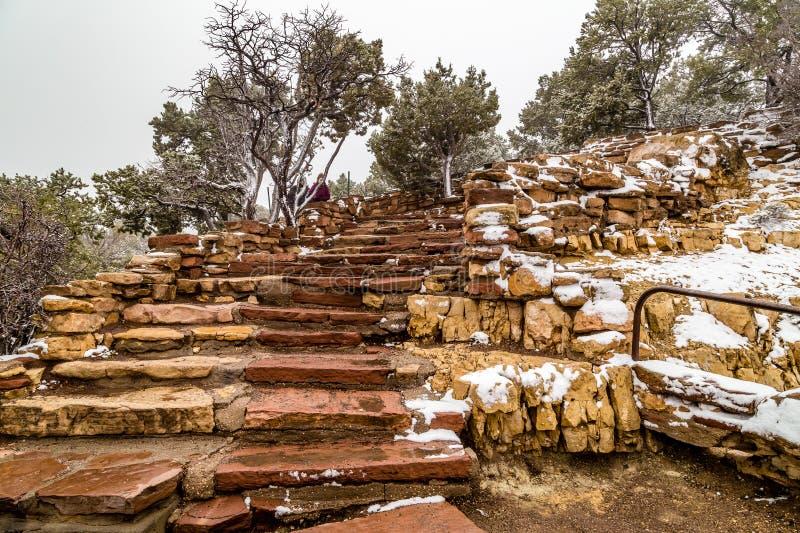Trappa i Grand Canyonnationalpark arkivfoton