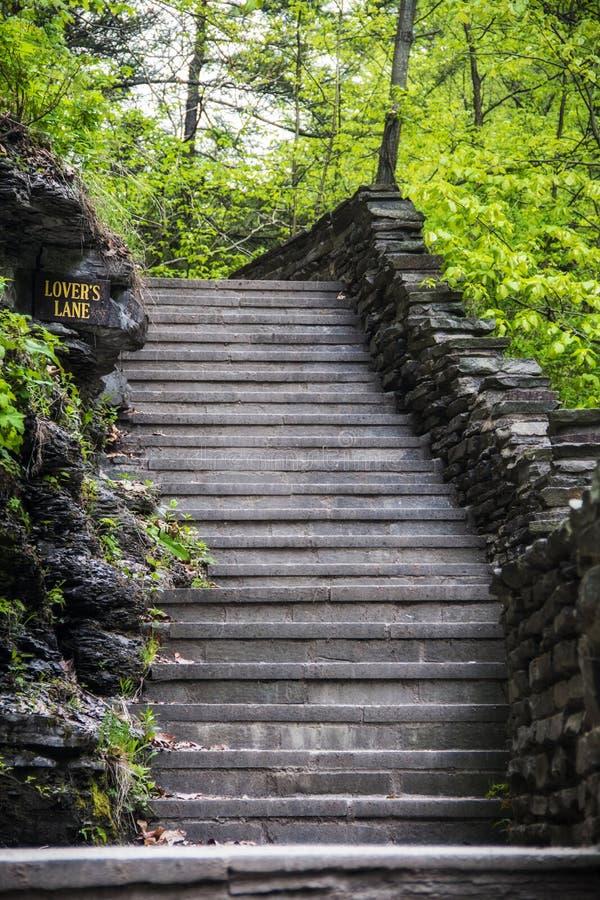 Trappa på Watkins Glen State Park i New York arkivbilder