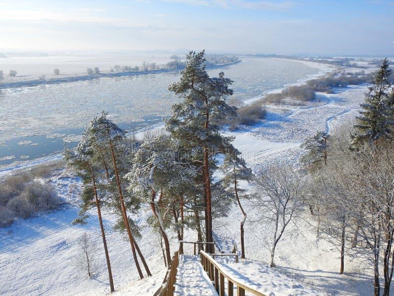 Trappa som går från kullen till den Nemunas floden, Litauen royaltyfri bild